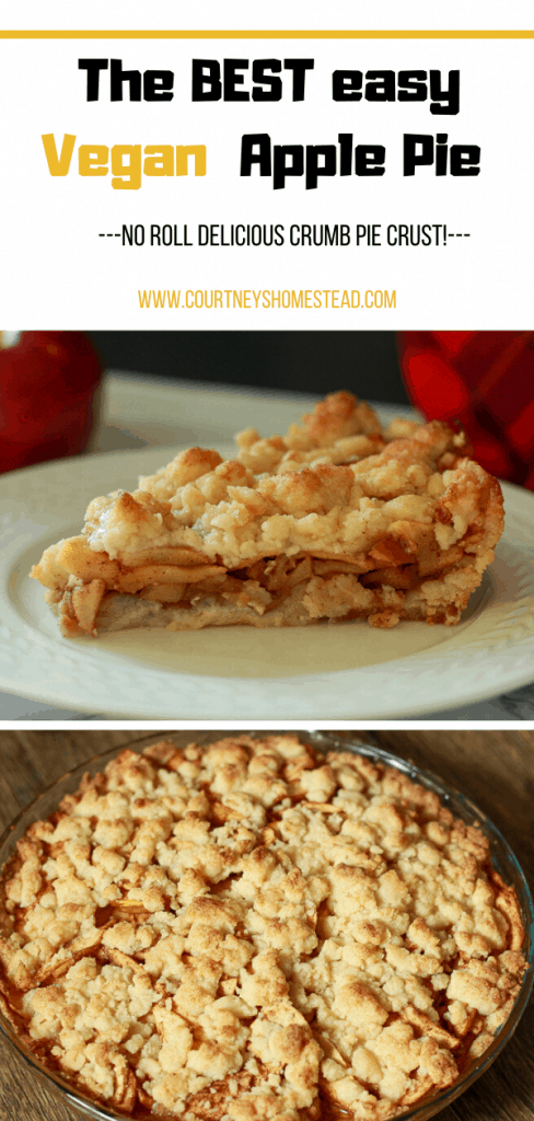 The best easy vegan apple pie