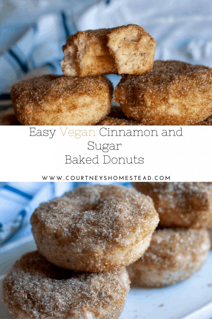 Vegan Cinnamon and Sugar Donuts
