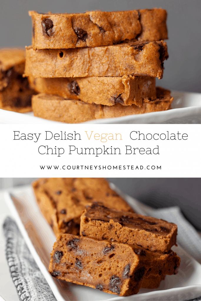 Vegan chocolate chip pumpkin bread